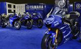 Race Blu series: the Yamaha-blue sports identity